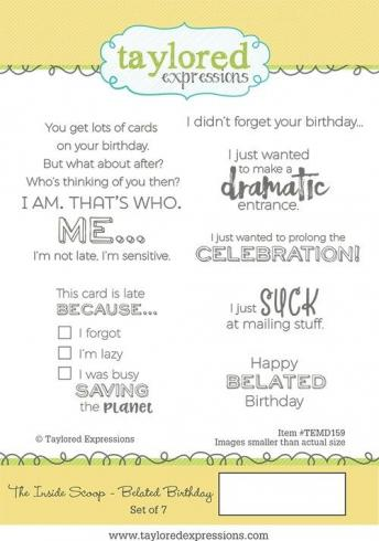 "Taylored Expressions Stempelset ""The Inside Scoop - Belated Birthday"" Clear Stamp..."